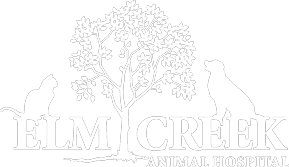 Elm Creek Animal Hospital